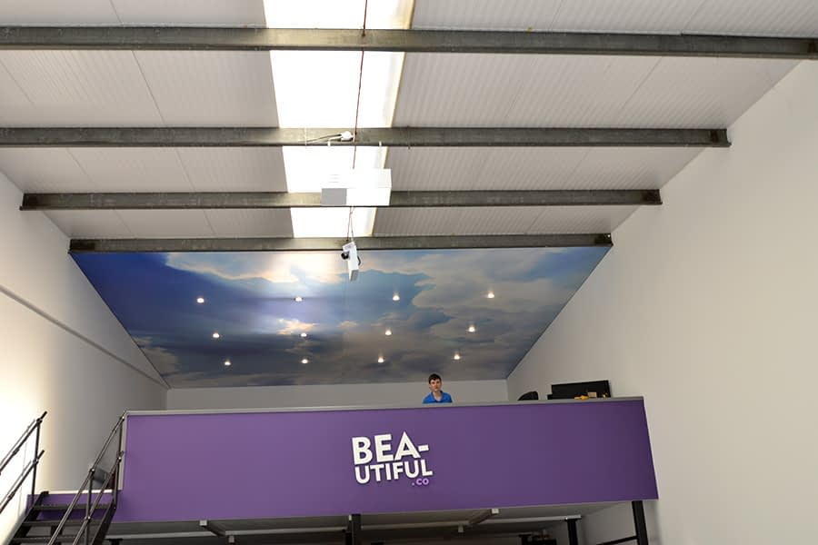 Blue sky and clouds printed ceiling