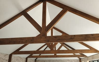 Latest Stretch Ceiling Trends