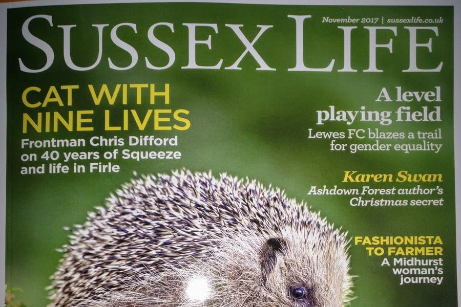 Sussex Life  and Stretch Ceilings